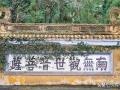普陀山旅游最大的寺院,正门不开,游客只能从边门进入?