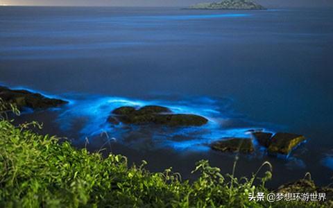 """舟山有个网红旅游地,据说有""""荧光海"""""""